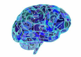 Blue Brain team discovers a multi-dimensional universe in brain networks ile ilgili görsel sonucu