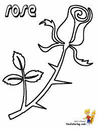 Coloring page with exotic flowers, zentangle illustartion for ad. Rose Flowers Coloring Pages Free Yescoloring Rose Coloring