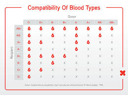 Blood Type Donor Compatibility Chart You Will Love Blood Type Chart Donor And Recipient Blood