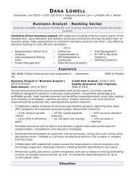 Business Resume Templates Monster Resume Templates Business Analyst Resume Sample 4