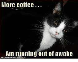 Grab your cup of joe, and enjoy these. More Coffee Am Running Out Of Awake Com Meme On Me Me
