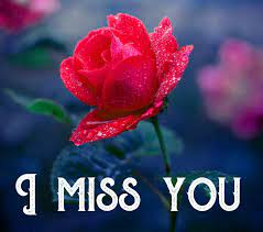 50+ I miss you lovely images download ...