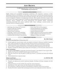 100 Executive Recruiter Resume Human Resources Cl El Peppapp