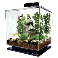 office desk fish tank. desk office ideas superb fish tank for my reception fantastic small modern photo apartment s