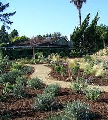 Backyard Design San Diego Simple Inspiration