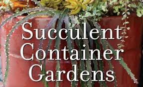 Succulent Container Gardens Tips And Tricks  YouTubeSucculent Container Garden Plans