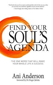 how to make a agenda amazon com find your souls agenda the one word that will make