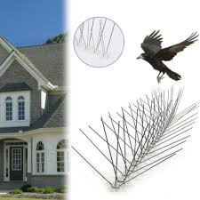 10pcs 30cm <b>Stainless</b> Steel <b>Bird</b> Spikes Anti <b>Bird Pigeon</b> Spike Pest ...