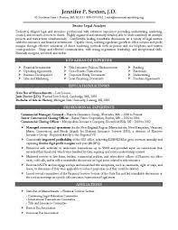 Legal Resume Format Resume