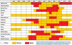 Florida Fishing Seasons Chart 36 Prototypical Florida Saltwater Fish Identification Chart Pdf