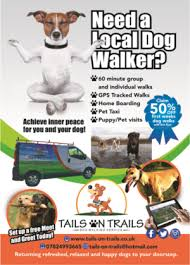 dog walking advertising playful modern business flyer design for tails on trails by ana
