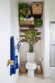 Erick's Modern Organic Burbank Mix  House Tour (shelving over toilet +  plants)
