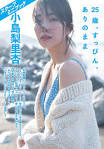 小島梨里杏の最新おっぱい画像(20)