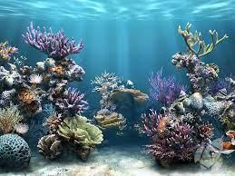 Sim Aquarium 3D - latest version 2021 ...