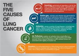 smoking causes lung cancer essay docoments ojazlink smoking causes lung cancer essay