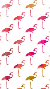 cute iphone wallpaper with ombre pink and orange flamingos