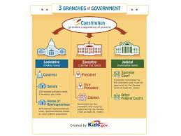 Three Branches Of Government Tree Diagram Modern Life