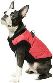 Gooby Fashion Quilted Bomber Dog Vest With Stretchable Chest Red Medium