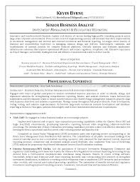 senior business analyst resume