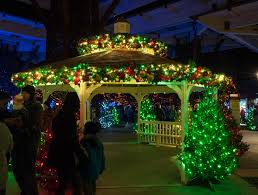 Indianapolis Zoo Lights Vote For The Indianapolis Zoo In Usa Todays 10 Best Zoo