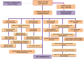 Department Structure Chart City Government Of Cebu Organizational Structure