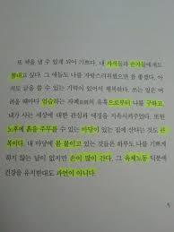 first korean essay book korean vitamin anyway