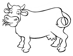 Small Picture Cow coloring pages eating grass ColoringStar