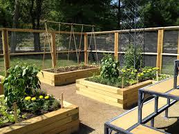 Small Picture garden ideas Imposing Design Raised Garden Beds Design