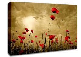 red poppy skies on poppy wall art uk with poppy canvas art wallartdirect uk