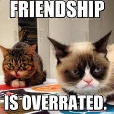 Grumpy cat:) on Pinterest | Grumpy Cat Meme, Meme and Grumpy Kitty via Relatably.com
