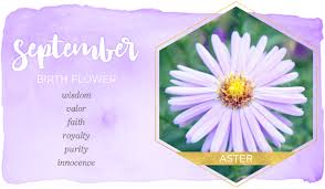Month Flowers Chart Birth Month Flowers And Their Meanings