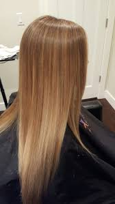 Honey Blonde Golden Blonde Natural Color