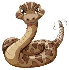 rattlesnake clipart. Brilliant Rattlesnake Rattlesnake On White Background Illustration Stock Vector  55196555 With Clipart K