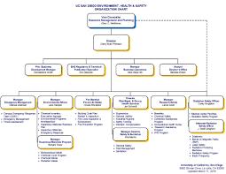 Safety Committee Organization Chart Sample Starbucks