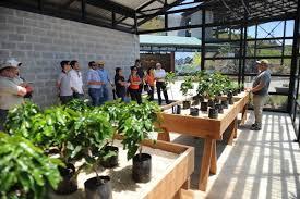 It's to help ensure the future of coffee for everyone. Hacienda Alsacia Starbucks Coffee Farm Incostarica