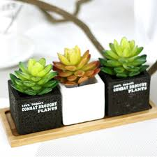lotus cactus plants artificial succulent cactus plants for office home deco charming office plants