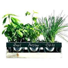 outdoor herb garden kit planter kitchen pots starter