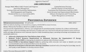 Resume Forms Online Beauteous Cv Maker Professional Examples Onliner Craftcv Creative Example