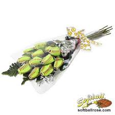 senior portrait ideas for softball players sports roses your pion for sports expressed