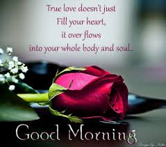 Quotes About Good Morning Love Best Of Good Morning True Love Pictures Photos And Images For Facebook