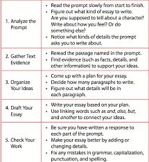 extended response baby literary essays test writing picture