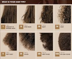 Black Natural Hair Types Chart Hair Typing Is Knowing Your Hair Type Necessary