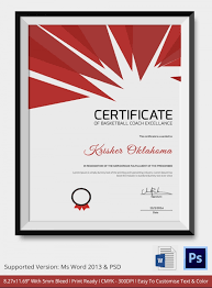 Coach Certificate Template 10 Free Word Pdf Documents Download