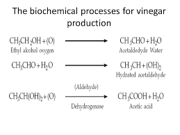 Industrial Production Of Vinegar Flow Chart Production Of Vinegar Ppt Video Online Download