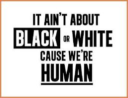 Anti Racism Quotes Interesting Anti Racism Quotes Sample Biodata