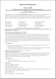 Bank Teller Resume Objective Unique Professional Summary For Bank