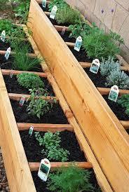 garden box ideas. Interesting Box Divided Raised Herb Garden Bed On Box Ideas