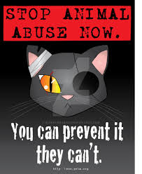 stop animal abuse by superfreak on  stop animal abuse by superfreak330
