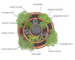Small Picture Herb Garden Plans Gardens and Landscapings Decoration