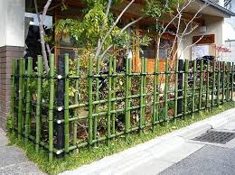 bamboo garden stakes. Garden Bamboo Yard Design With Green Fence And Small Front Stakes S